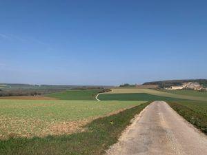Typisch Bourgogne